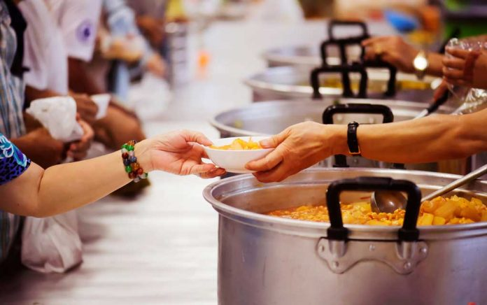 How Volunteering Can Help Launch Your Career