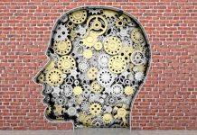 Amazing Ways the Brain Works